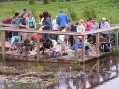 Project Webfoot class, critter dipping