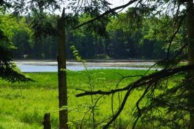 St. Andrew's Marsh